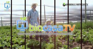 biocasa.tv - uomini e imprese tv